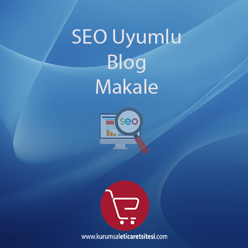 Seo Uyumlu Blog/Makale
